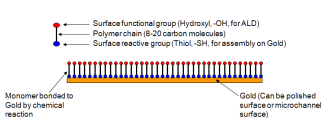 Illustration of hydrophillic surface preparation using selfassembled monolayer technique